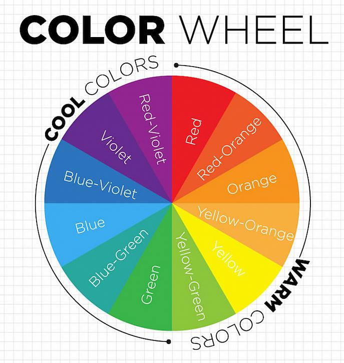 color-wheel-branding-website-color-scheme